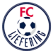 https://leaguespy.com/Liefering