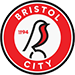 https://leaguespy.com/Bristol City