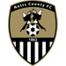 https://leaguespy.com/Notts County
